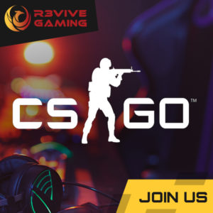 CSGO Whatsapp Gruppe » Streamer » Gaming Homepage » Logo Design